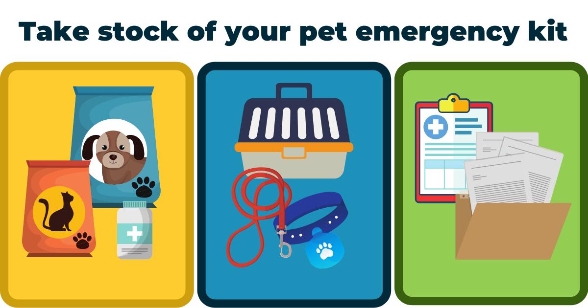 pet emergency plan